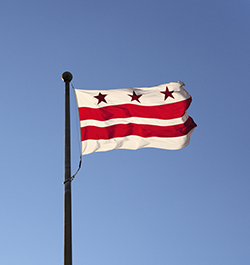 DC - State Flag